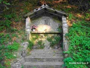 Verginetta nei pressi del Ponte della Verdiana